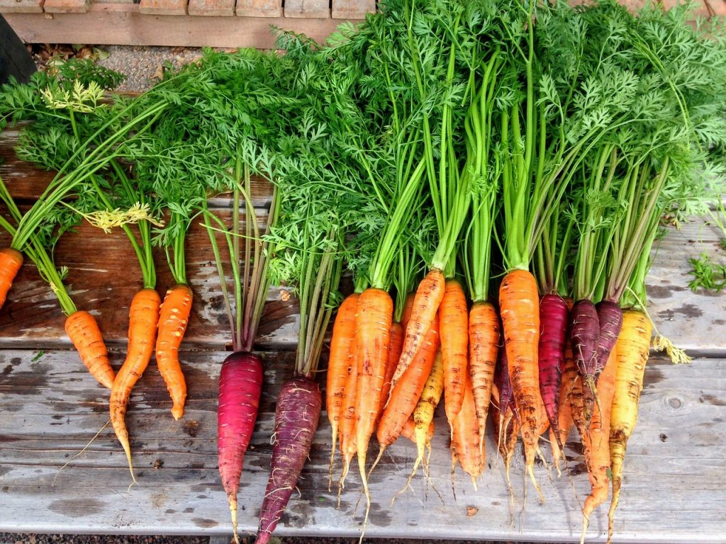 benefits of organic food like rainbow carrots