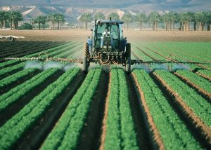 why pesticides are harmful