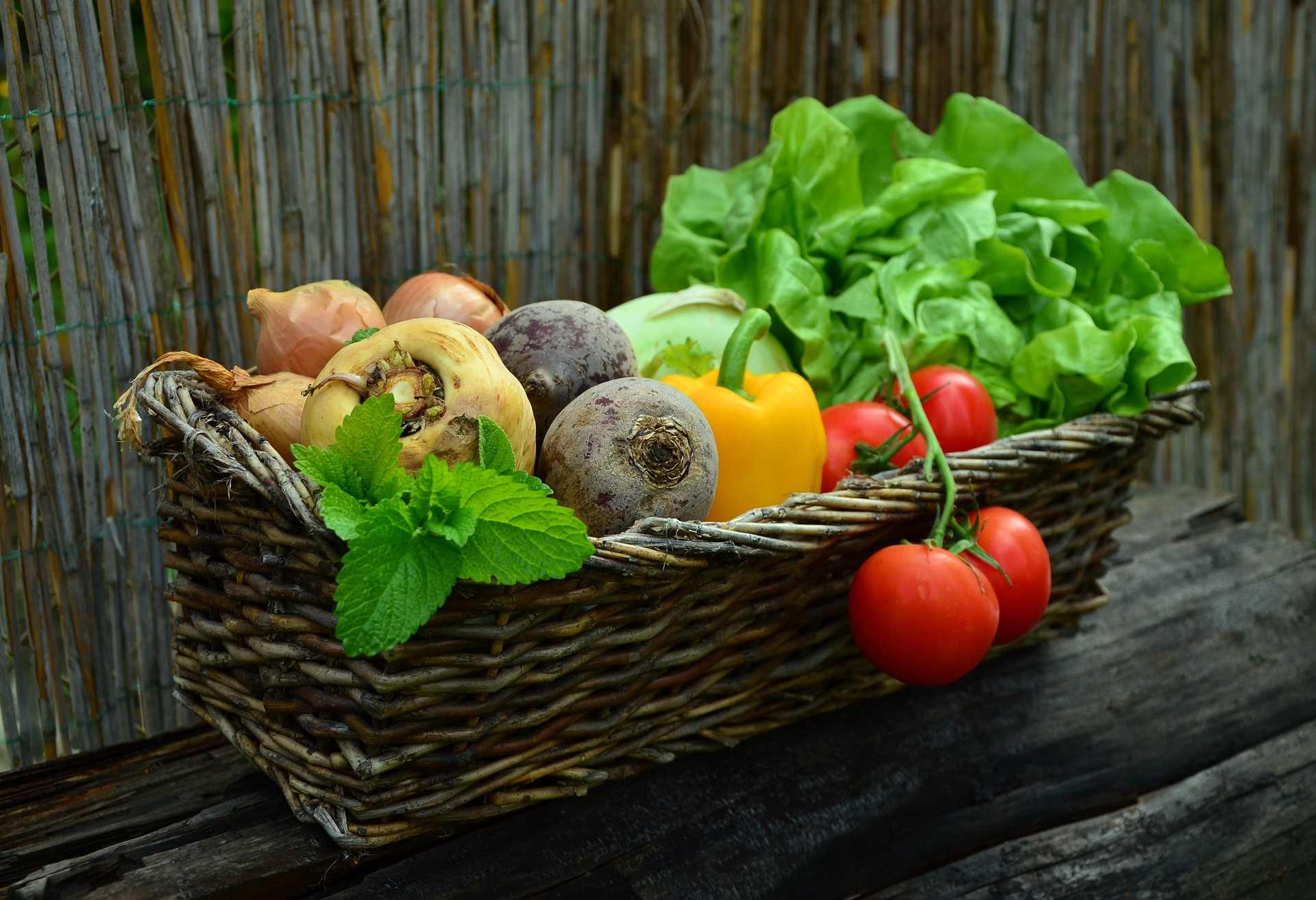 Benefits of Organic food like tomatoes, lettus, beets...
